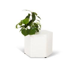Potomac | Contenore / Vasi per piante | Horreds