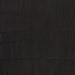 Aldani ID58 | Wood panels | CLEAF