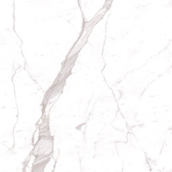 Maxfine Marmi Bianco Venato Extra | Rivestimento di facciata | FMG