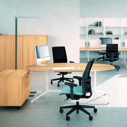 X2 | Executive desks | Quadrifoglio Office Furniture