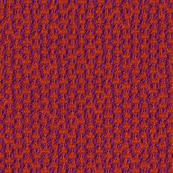 Dante Litchi | Fabrics | rohi