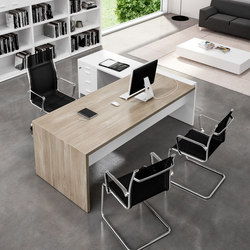 T45 | Direktionstische | Quadrifoglio Office Furniture