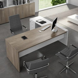 T45 | Executive desks | Quadrifoglio Office Furniture