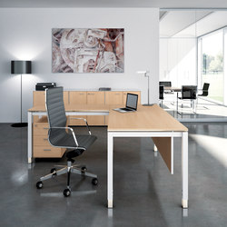 X4 | Direktionstische | Quadrifoglio Office Furniture