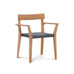 TEKA armchair | Sillas de jardín | Roda