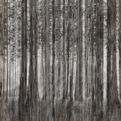 Robin Hood | Wall coverings / wallpapers | Inkiostro Bianco