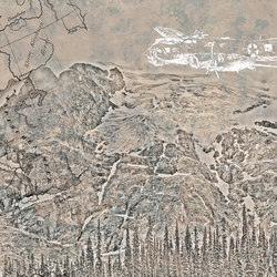 Tora tora | Wall art / Murals | Inkiostro Bianco