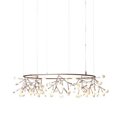 Heracleum Small Big O | Suspended lights | moooi