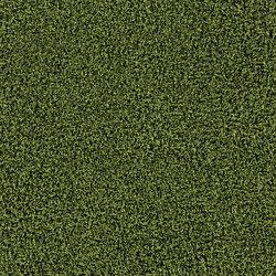 Touch and Tones 103 4176016 Moss | Dalles de moquette | Interface