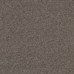 Tessera Teviot seal | Carpet tiles | Forbo Flooring