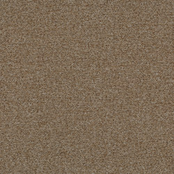 Tessera Teviot malt | Carpet tiles | Forbo Flooring