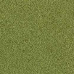 Tessera Teviot meadow | Carpet tiles | Forbo Flooring