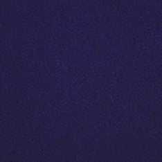 Westbond Ibond Blues deep purple | Carpet tiles | Forbo Flooring