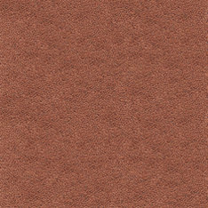 Westbond Ibond Naturals toasted almond | Carpet tiles | Forbo Flooring