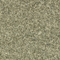 Westbond Natural masham | Carpet tiles | Forbo Flooring