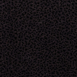 Westbond Flex dark woodland | Carpet tiles | Forbo Flooring