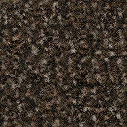 Coral Classic espresso | Baldosas de moqueta | Forbo Flooring