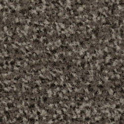 Coral Classic taupe | Carpet tiles | Forbo Flooring