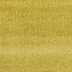 Splendido col. 008 | Curtain fabrics | Dedar