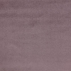 Splendido col. 024 | Tejidos para cortinas | Dedar