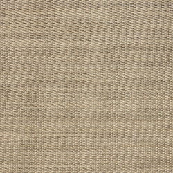 NEW BASIC | Sponge | Wall-to-wall carpets | 2tec2