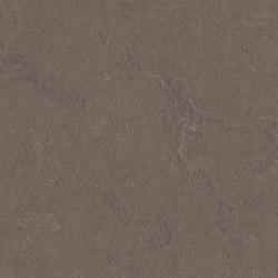 Marmoleum Concrete delta lace | Rollos de linóleo | Forbo Flooring