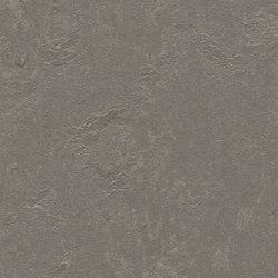Marmoleum Concrete meteorite | Linoleum rolls | Forbo Flooring