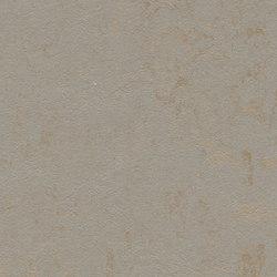 Marmoleum Concrete beton | Linoleum rolls | Forbo Flooring