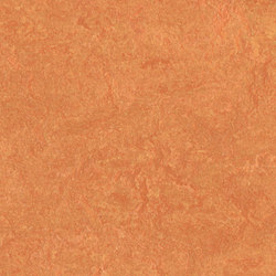 Marmoleum Fresco African desert | Linoleum rolls | Forbo Flooring