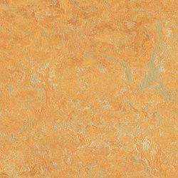 Marmoleum Fresco golden saffron | Linoleum rolls | Forbo Flooring