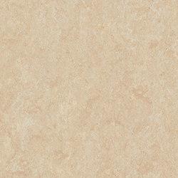 Marmoleum Fresco arabian pearl | Rollos | Forbo Flooring