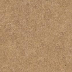 Marmoleum Fresco camel | Rouleaux de linoleum | Forbo Flooring