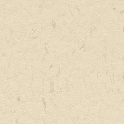 Marmoleum Piano eggshell | Linoleum rolls | Forbo Flooring