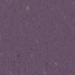 Marmoleum Piano thistle | Floors | Forbo Flooring