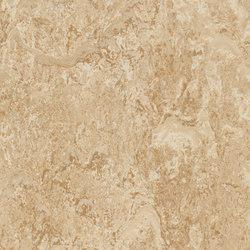 Marmoleum Real barley | Sols en linoléum | Forbo Flooring