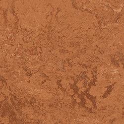 Marmoleum Real rust | Linoleum flooring | Forbo Flooring