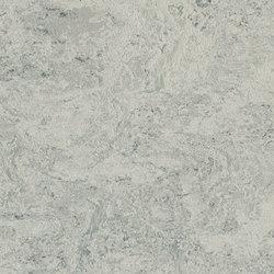 Marmoleum Real mist grey | Linoleum flooring | Forbo Flooring