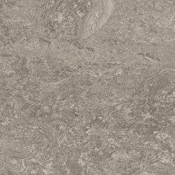 Marmoleum Real serene grey | Sols en linoléum | Forbo Flooring