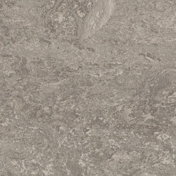 Marmoleum Real serene grey | Linoleum flooring | Forbo Flooring