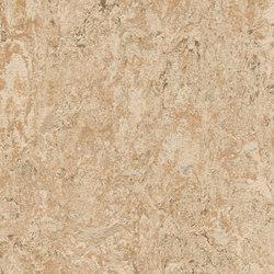 Marmoleum Real tan pink | Linoleum flooring | Forbo Flooring