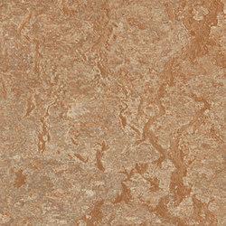 Marmoleum Real shitake | Linoleum flooring | Forbo Flooring