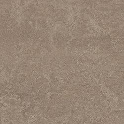 Marmoleum Real shrike | Linoleum flooring | Forbo Flooring