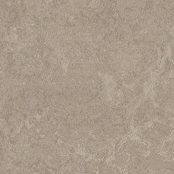 Marmoleum Real sparrow | Linoleum flooring | Forbo Flooring