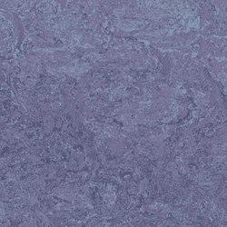 Marmoleum Real hyacinth | Linoleum flooring | Forbo Flooring