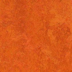 Marmoleum Real Kyoto | Linoleum flooring | Forbo Flooring