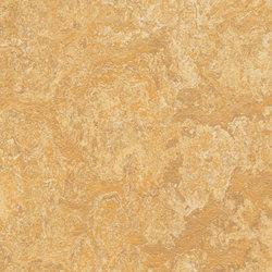 Marmoleum Real Van Gogh | Pavimenti in linoleum | Forbo Flooring