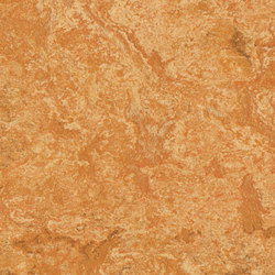 Marmoleum Real Sahara | Linoleum flooring | Forbo Flooring