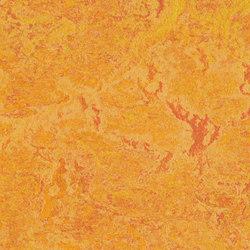 Marmoleum Real marigold | Linoleum flooring | Forbo Flooring