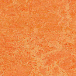 Marmoleum Real orange sorbet | Linoleum flooring | Forbo Flooring