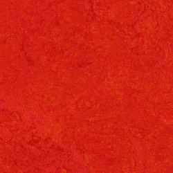 Marmoleum Real scarlet | Linoleum flooring | Forbo Flooring
